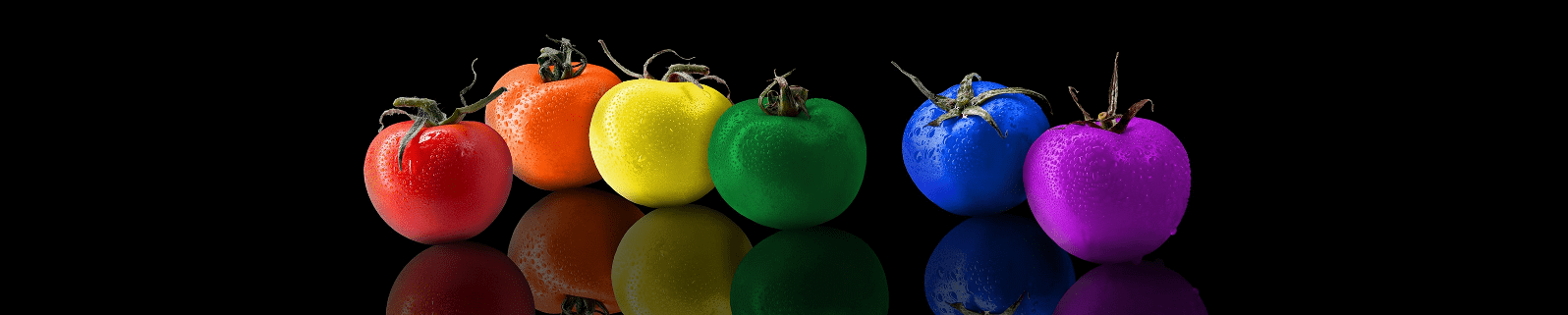 Intro banner - colored tomatoes